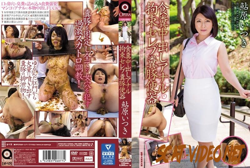 OPUD-227 Coprophagy restraint scat rape humilliation celebrity shit on human toilet Ayuhara Itsuki (2018) [FullHD/371.1603_OPUD-227]