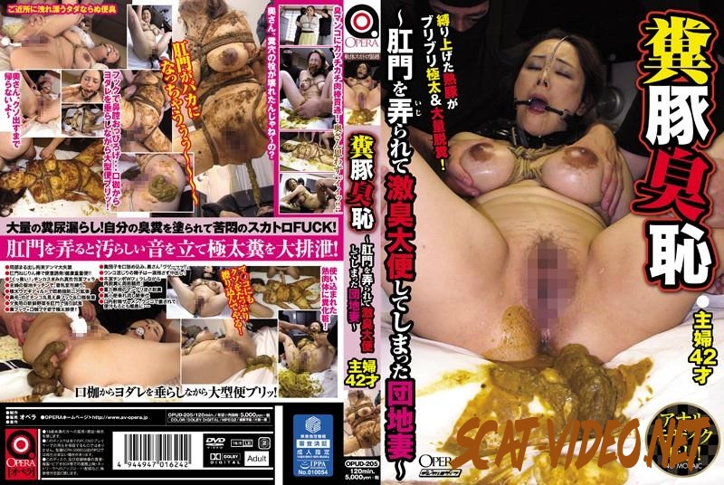 OPUD-205 Bondage housewife feces pig odor and shame training anus (2018) [SD/041.1517_OPUD-205]