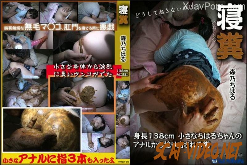 [VRNET-013] Feces Chiharu 最小スリーピング Urination Scat (2018) [SD/137.VRNET-013]