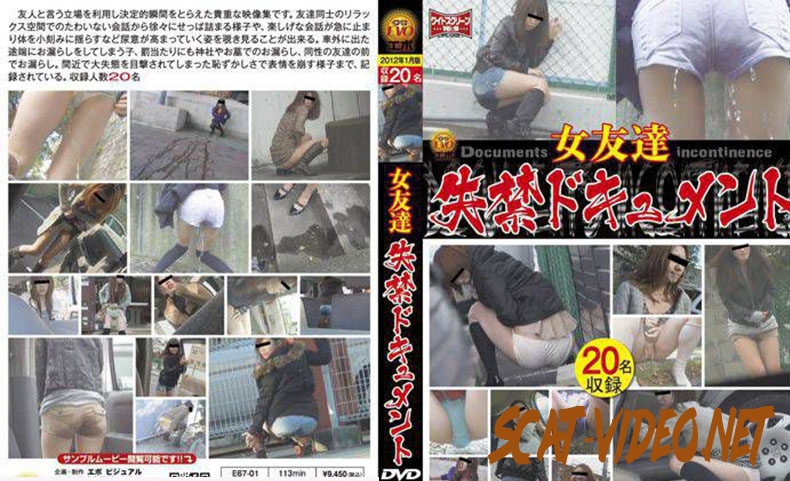 E67-01 女友達 失禁ドキュメント Friend Long Fed in the Toilet (2019) [SD/3.1583_E67-01]