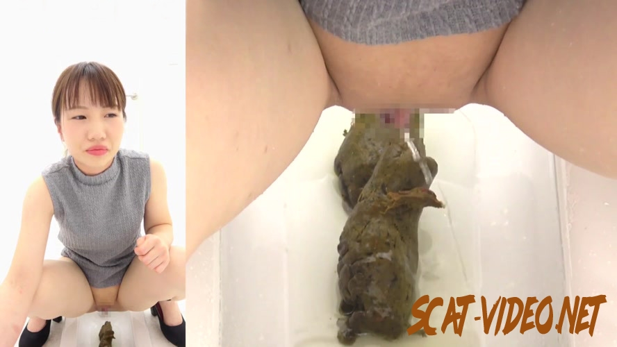 BFSR-264 排便大きなTurdクローズアップトイレ Defecation Big Turd Closeup Toilet (2019) [FullHD/4.2642_BFSR-264]