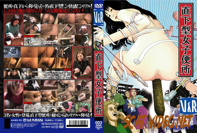VRXS-03 Women's Toilet Epicentral 女性のトイレ震源 (2020) [SD/3.3419_VRXS-03]